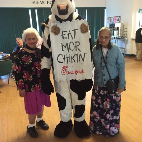 More with the friendly cow