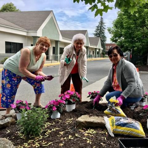 Elmwood Hall Garden Club Summer Planting!