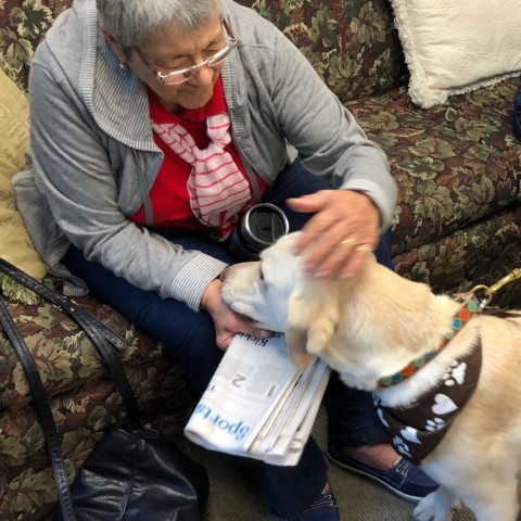 Angie visits with certified therapy dog Zeb